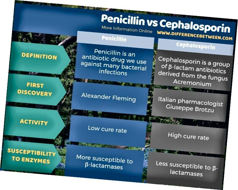 Ënnerscheed tëscht Penicillin a Cephalosporin an Tabulärer Form