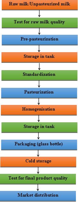 Разница между пастеризованным и непастеризованным пастеризацией молока