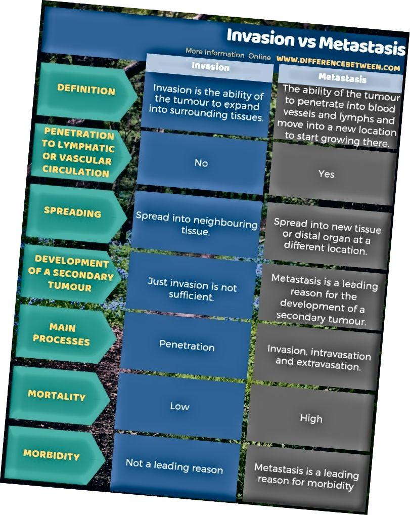 Invasiooni ja metastaaside erinevus tabelina