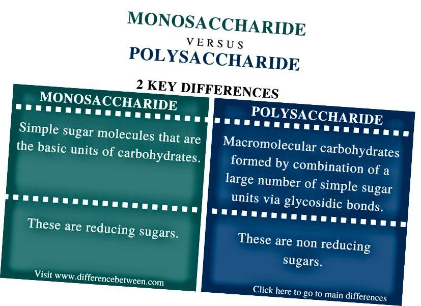 Erinevus monosahhariidi ja polüsahhariidi vahel - võrdluskokkuvõte