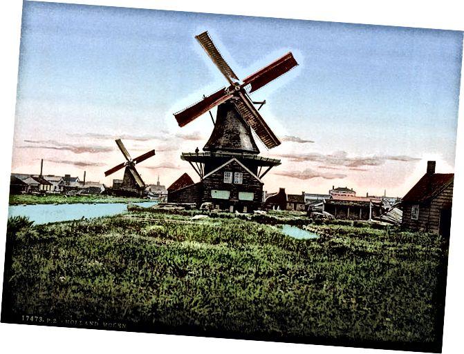 الهولندي