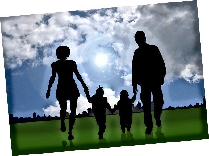 Ënnerscheed tëscht Adoptioun an Adaptatioun