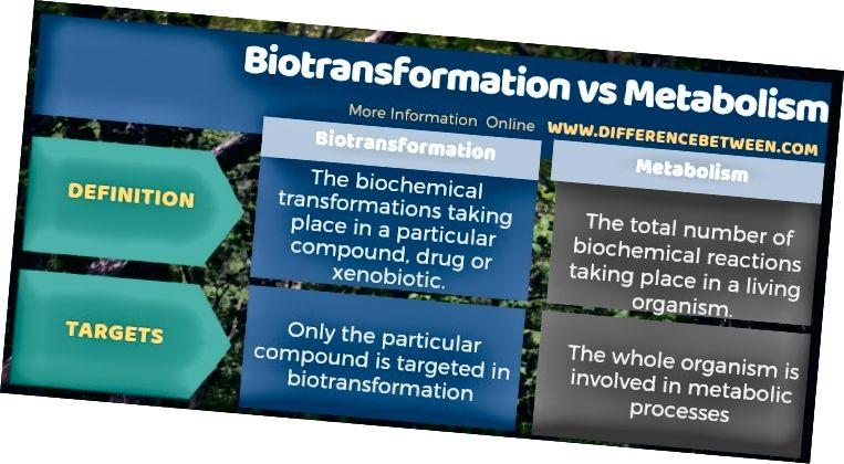 Διαφορά μεταξύ του βιομετασχηματισμού και του μεταβολισμού σε μορφή πίνακα