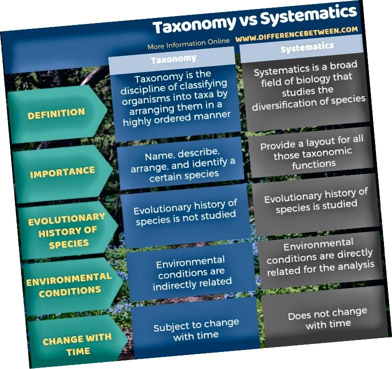الفرق بين التصنيف والنظاميات في شكل جدول