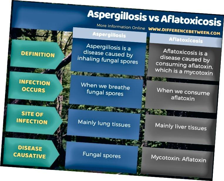 ความแตกต่างระหว่าง Aspergillosis และ Aflatoxicosis - รูปแบบตาราง