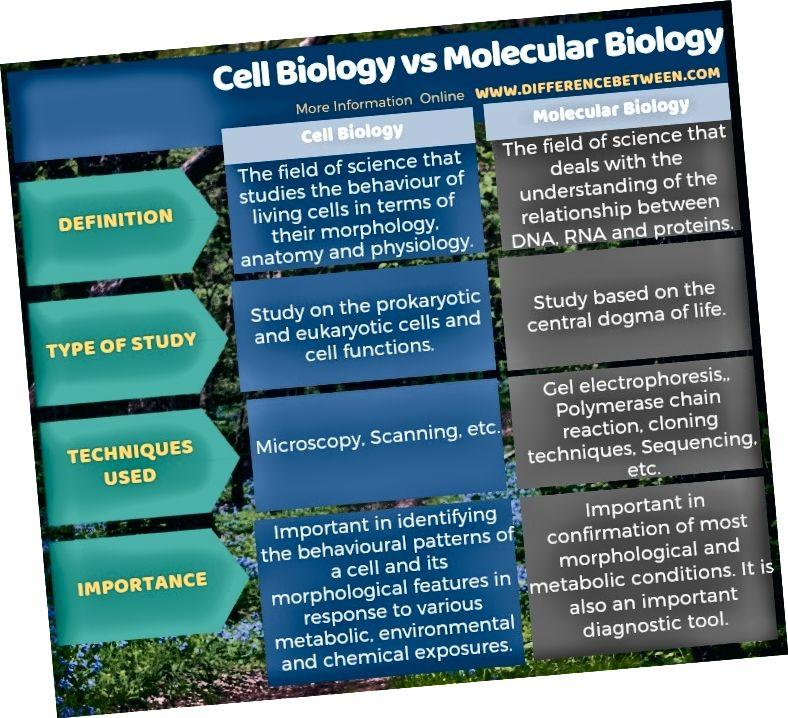 Разлика между клетъчната биология и молекулярната биология в таблична форма