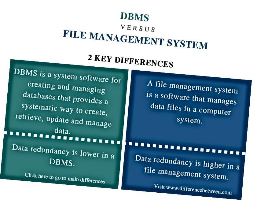 Erinevus DBMS-i ja failihaldussüsteemi vahel_võrdluse kokkuvõte