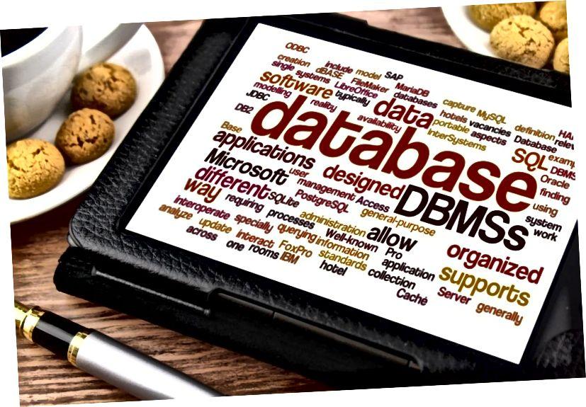 Erinevus DBMS-i ja failihaldussüsteemi vahel