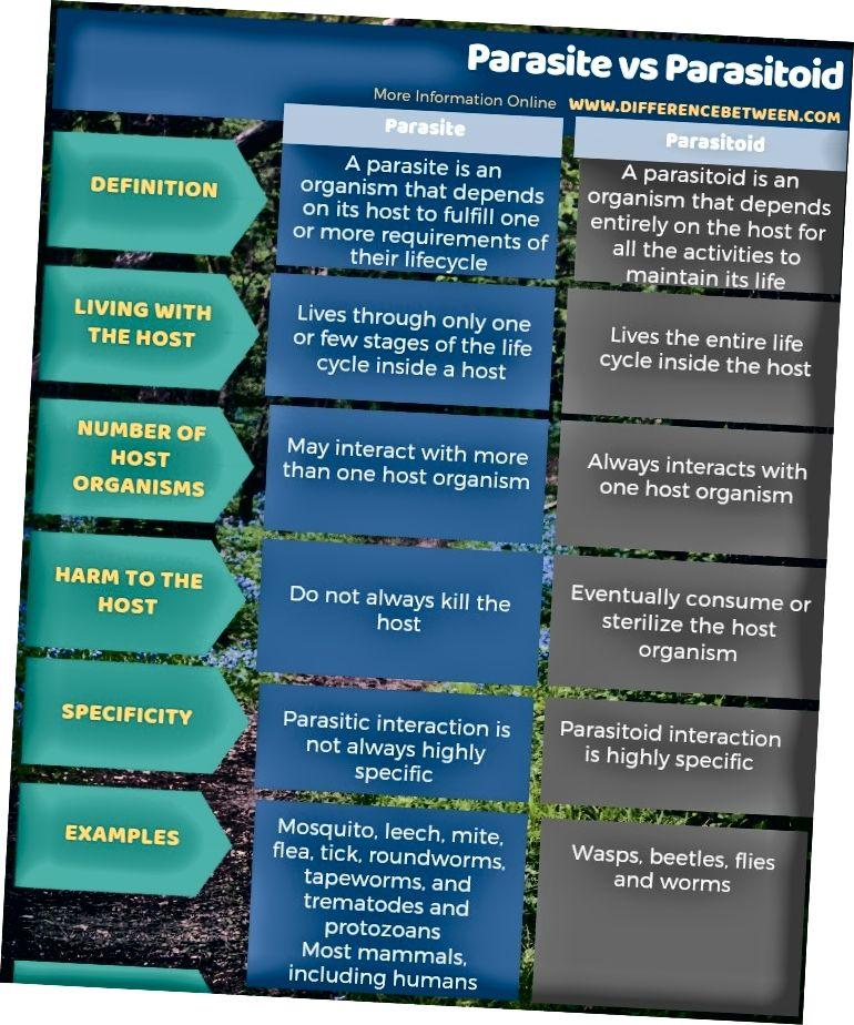 Parasiidi ja parasitoidi erinevus tabelina