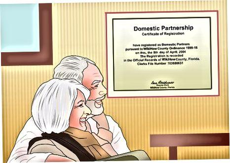 Kodumaise partnerluse üle otsustamine