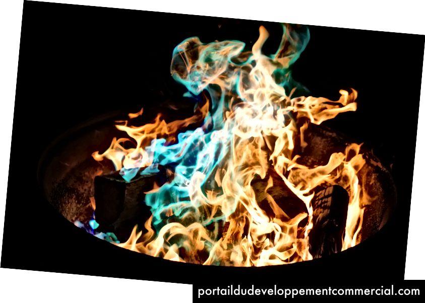 समय वह स्कूल है जिसमें हम सीखते हैं, समय वह आग है जिसमें हम जलते हैं -देल्मोर श्वार्ज़ (छवि स्रोत)