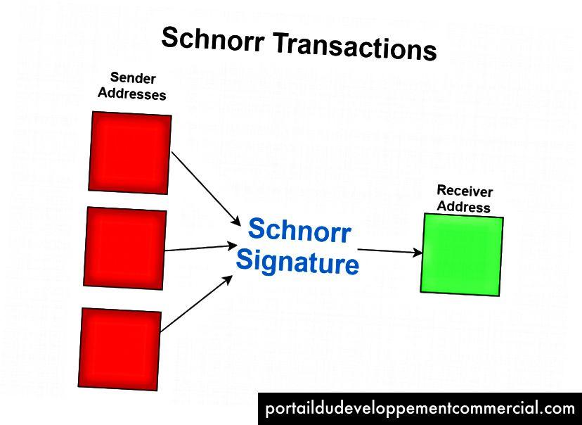 Toutes les signatures de l'expéditeur sont stockées sous la forme d'une signature sous l'algorithme de Schnorr