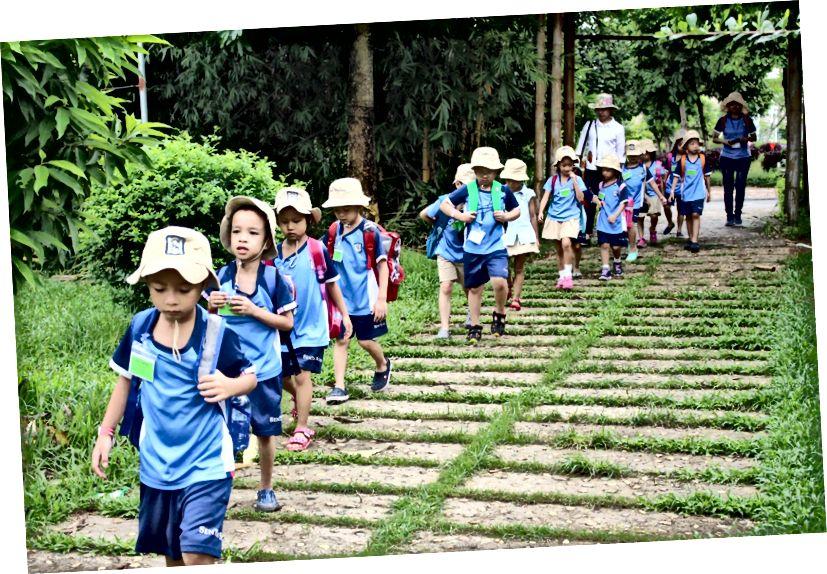 De Trang მეურნეობა