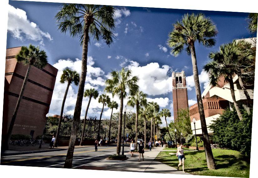 University of Florida campus i Gainesville, Florida.