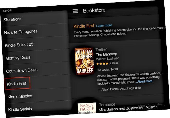 Nejprve Kindle