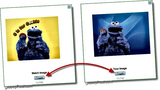 TinEye Screenshot - Vergleich von Originalbild und Matchbild