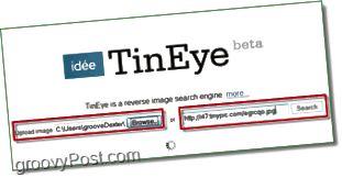 TinEye Screenshot - Laden Sie Ihr Bild für Duplikate und größere Versionen hoch