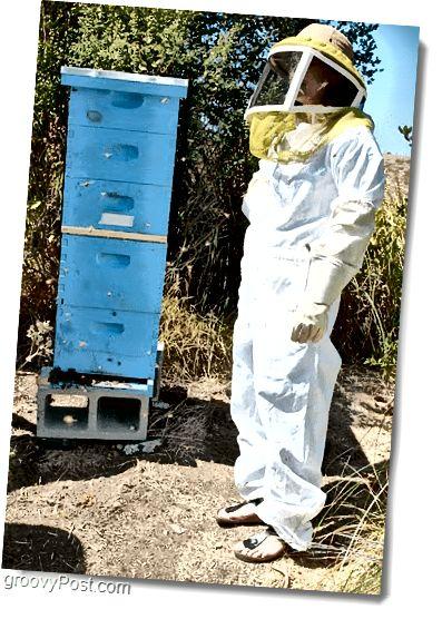Google Bee 5 Geschicht Hive