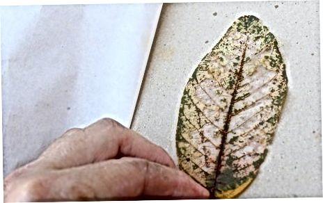 Декориране или използване на листа