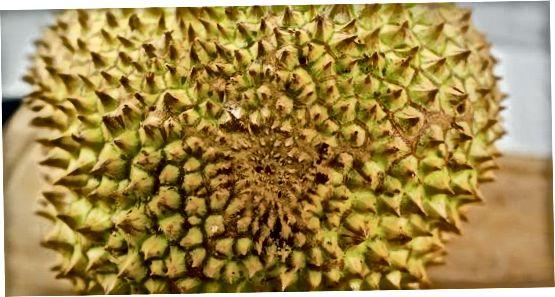 Durianı boşaltmaq