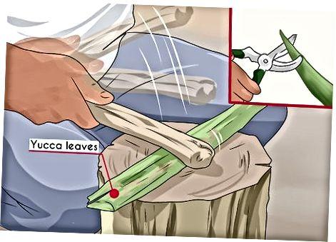 Обработка на растения за направа на въже