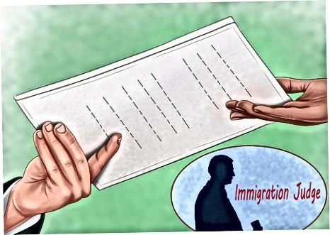 Immigratsiya sudiga murojaat qilish
