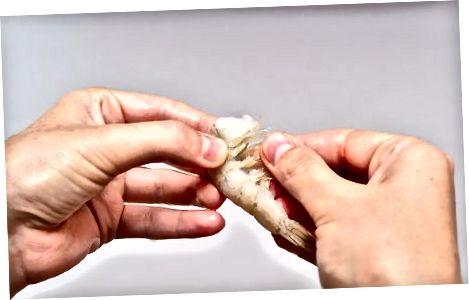Обезвредете скаридите [1] X Изследователски източник