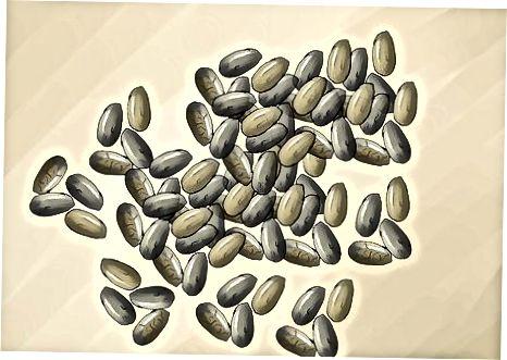 Приготвяне на смутита, които понижават холестерола