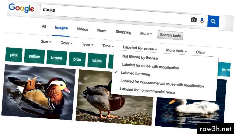 استعلام بحث الصور من Google مع تحديد خيار