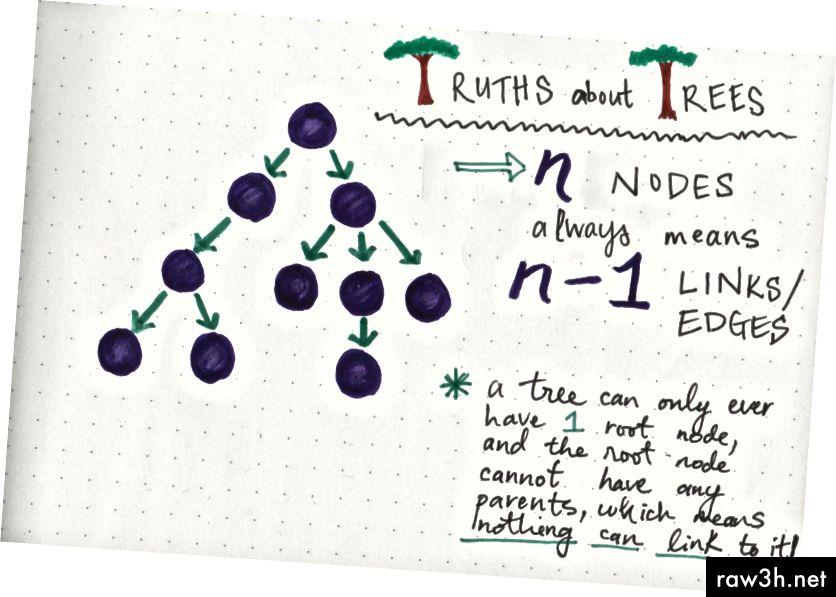 حقائق شجرة: سيكون للشجرة دائمًا رابط أقل من العدد الإجمالي للعقد