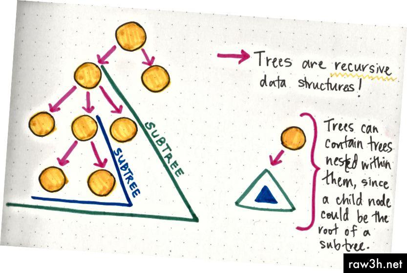 حقائق شجرة: الأشجار هي هياكل البيانات العودية