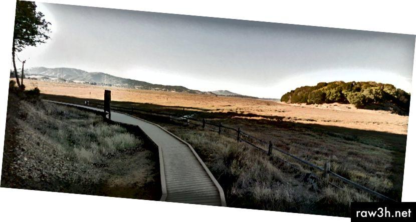 موقع في حديقة China Camp State حيث قضى والدي الكثير من الوقت (Google Street View)