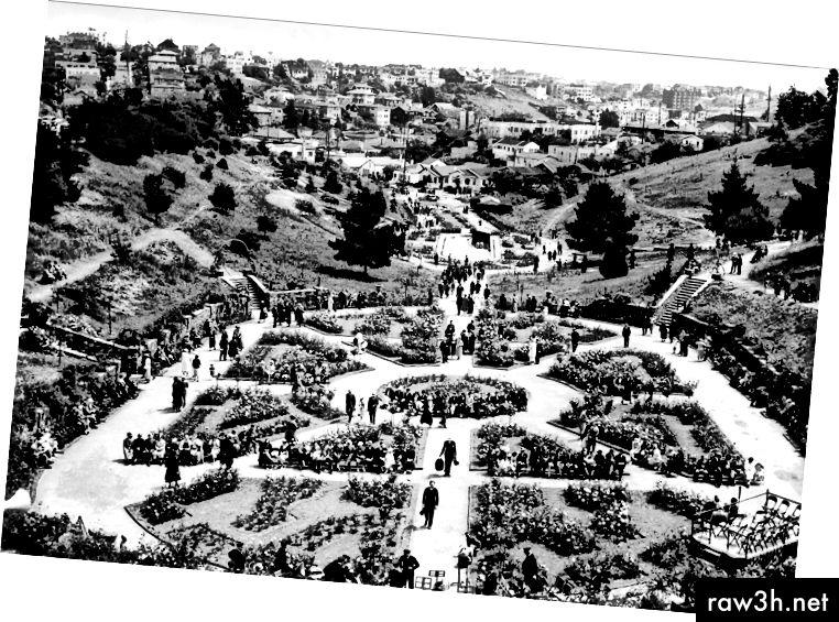 إعلان (1932) وصورة (1936) من أوكلاند تريبيون