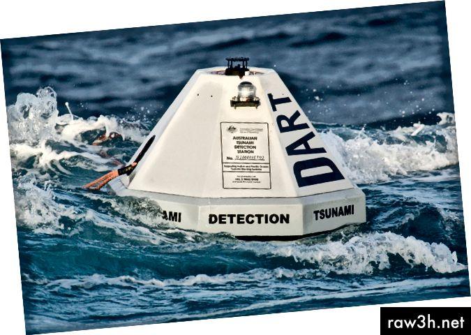 وضعت DART في الوقت الحقيقي لأنظمة مراقبة تسونامي على بعد آلاف الأميال من الشاطئ تساعد في التنبؤ بالتسونامي قبل أن تصبح تهديدًا. (الصورة: مركز نوا لأبحاث التسونامي)