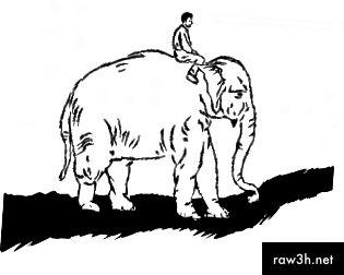 За да се придържате към навиците си, трябва да насочите ездача, да мотивирате слона и да оформите пътеката.