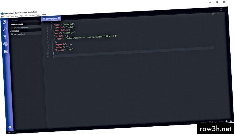 هذا ما سيبدو عليه ملف package.json في البداية. أنا أستخدم كود VS لغرض هذا البرنامج التعليمي