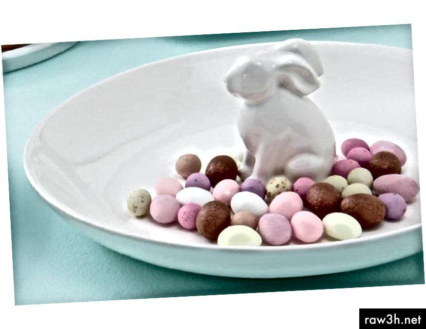 Το κουτάβι My Bunny με γλυκές απολαύσεις