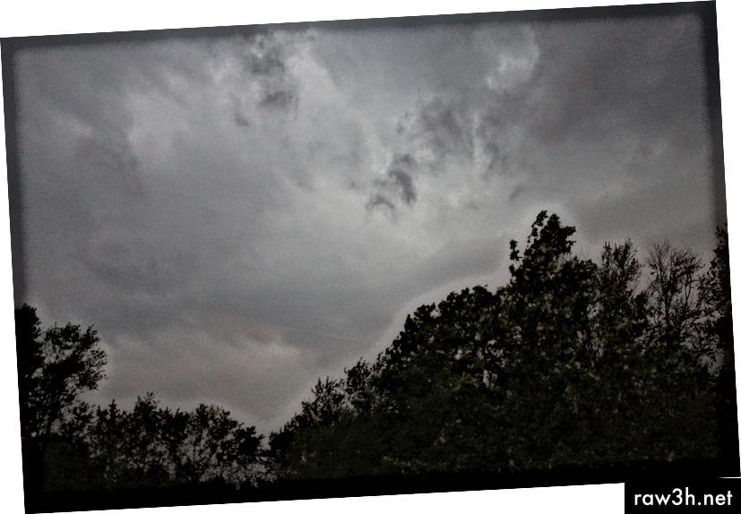 © 2019 Erica Graham-Storm flytter ind i området.