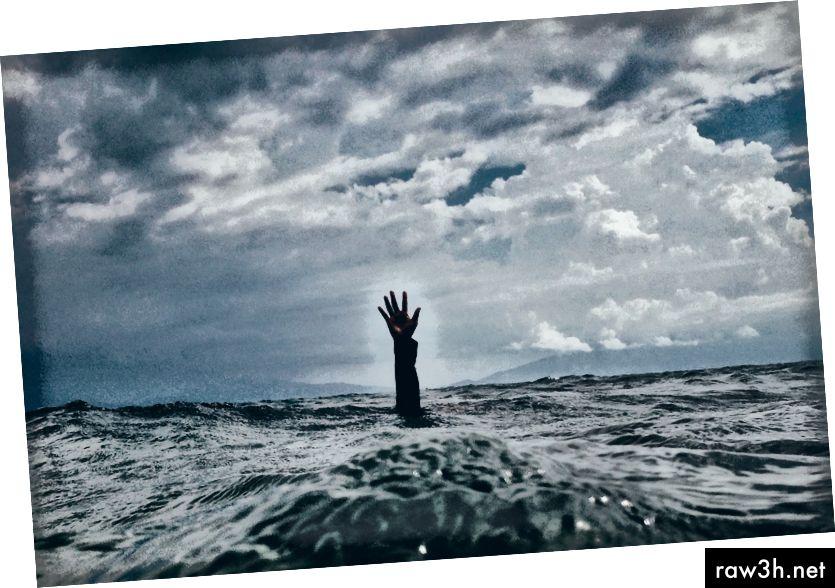 الصورة nikko macaspac على Unsplash