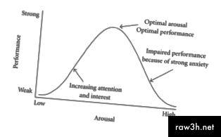 Хебийската версия на закона на Йеркес-Додсън - психологическа теория за оптимално възбуждане.