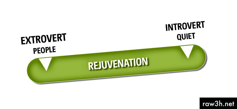 الشكل 1: برنامج التعريف التجديد