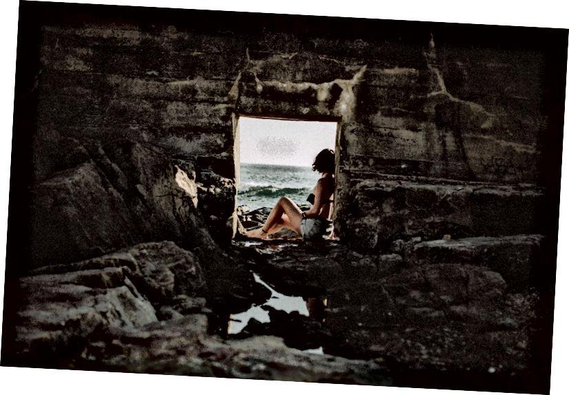 अनस्प्लेश डॉट कॉमवर किंग सिचेविक्जचे फोटो