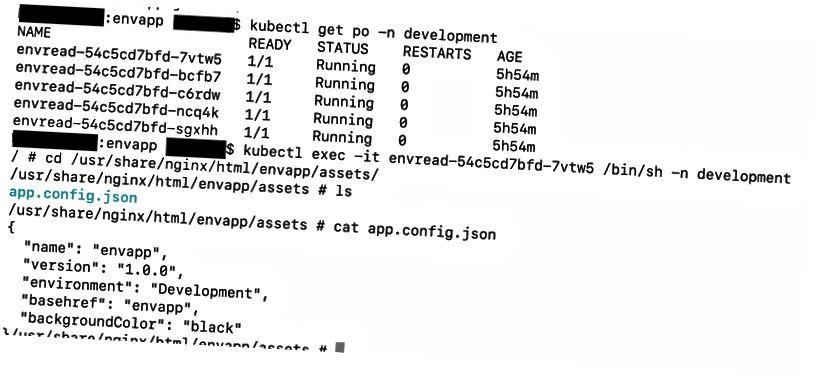 app.config.json