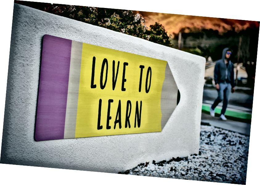 SPOILER: शिक्षा! लेकिन इतना ही नहीं। Unsplash पर टिम मॉसहोल्डर द्वारा फोटो