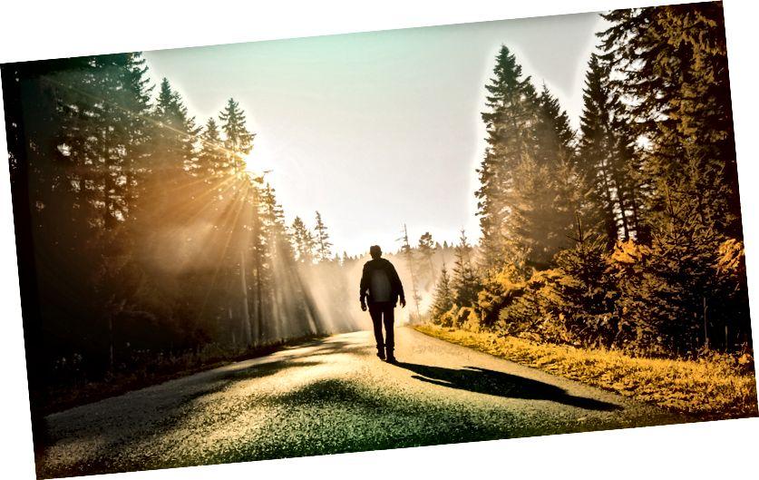 Fotografický kredit: Adobe Stock / radeboj11