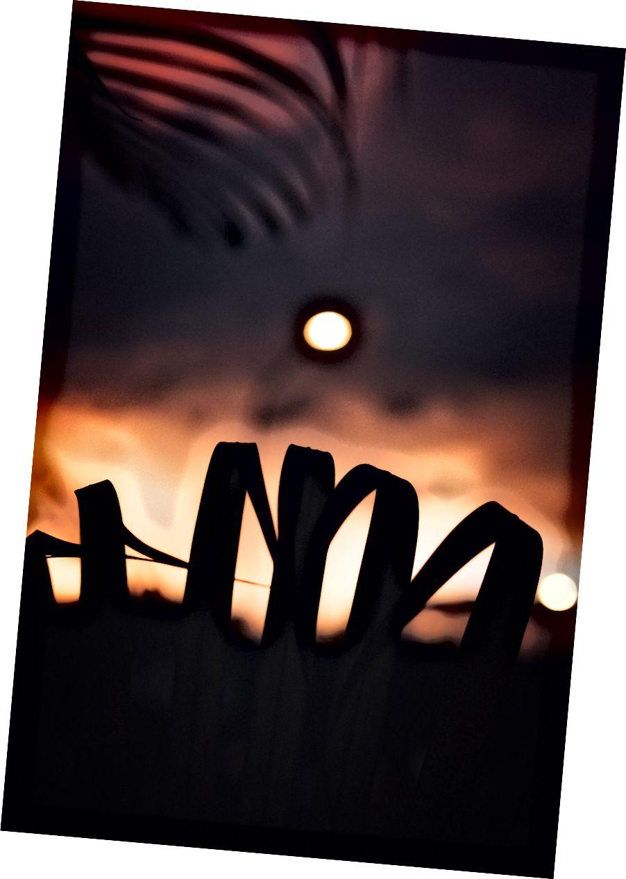 टिम फॉस्टर अनस्प्लेश फोटो