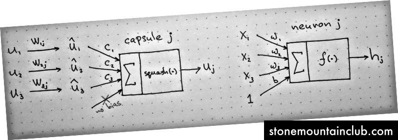 Chapdan: kapsula diagrammasi; o'ngda: sun'iy neyron. Manba: naturomics tomonidan berilgan CapsNets-dagi nutqdan ilhomlangan muallif.