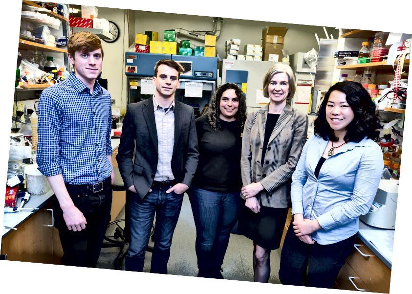 Nhóm sáng lập Mammoth (từ trái sang phải): Lucas Harrington (ứng cử viên tiến sĩ Berkeley), Trevor Martin (tiến sĩ Stanford), tiến sĩ Ashley Tehranchi (tiến sĩ Stanford), tiến sĩ Jennifer Doudna (giáo sư & tiến sĩ Berkeley), Janice Chen (Berkeley Ứng viên tiến sĩ).