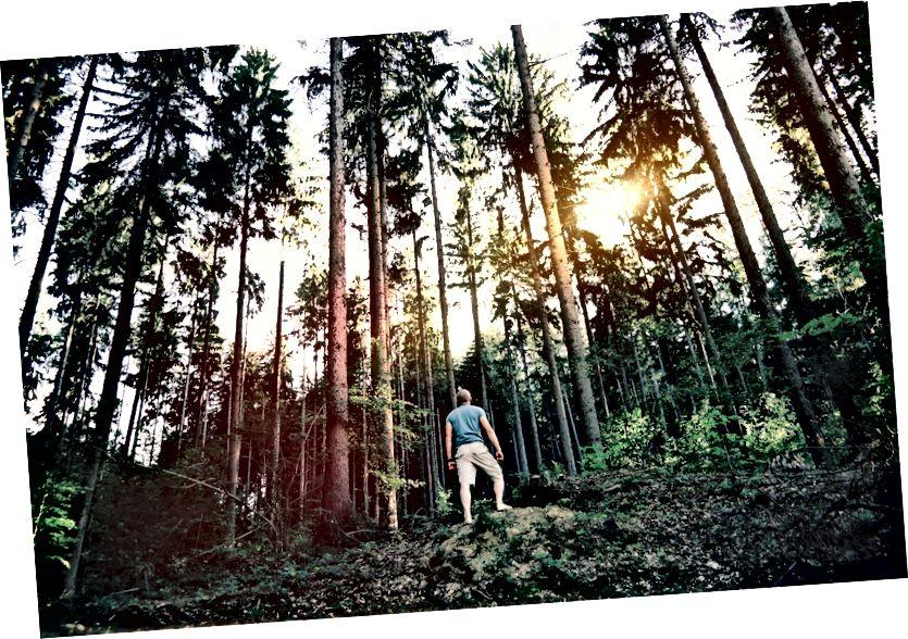 Η άμεση εμπειρία στη φύση σπάνια απογοητεύει. Βγείτε και εξερευνήστε! Φωτογραφία από το Twenty20.