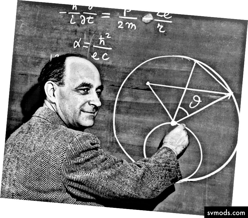 """""""Hin und wieder hat unser Auto auf der Reise ein Kaninchen getötet. Ich erinnere mich, wie Fermi auf einer Reise berechnet hat, wie viele Kaninchen pro Quadratmeile vorhanden sein müssen, basierend auf der Geschwindigkeit des Autos und der Anzahl der getöteten Kaninchen. Es war ihm eine große Freude, ungefähre Antworten auf der Grundlage grober Daten und vernünftiger Annahmen zu finden. """"- John Archibald Wheeler in Geons, Black Holes und Quantum Foam"""